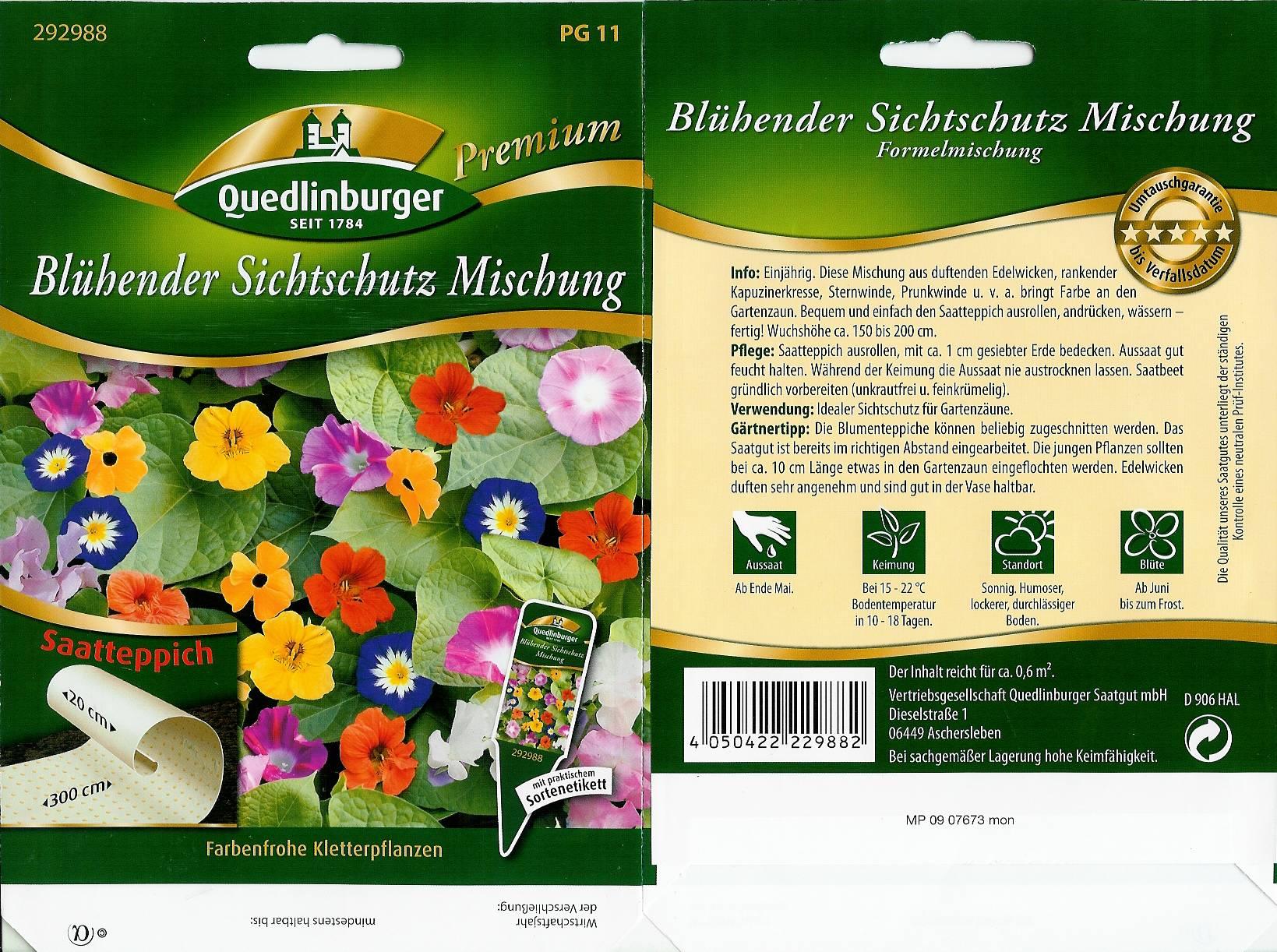 Sonnenblume ST Blühender Sichtschutz